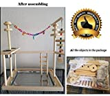 QBLEEV Parrot Wood Stand Perch Bird Playstand