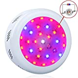 King Plus UFO 300w Double Chips LED Grow Light Full Specturm for Greenhouse and Indoor Plant Flowering Growing (10w Leds)