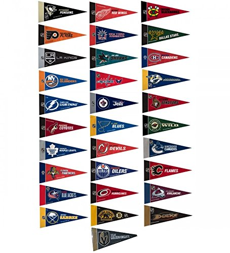 NHL Hockey Complete 31 Team 4x9 Mini Pennant Set (Includes Las Vegas Golden Knights) by Rico