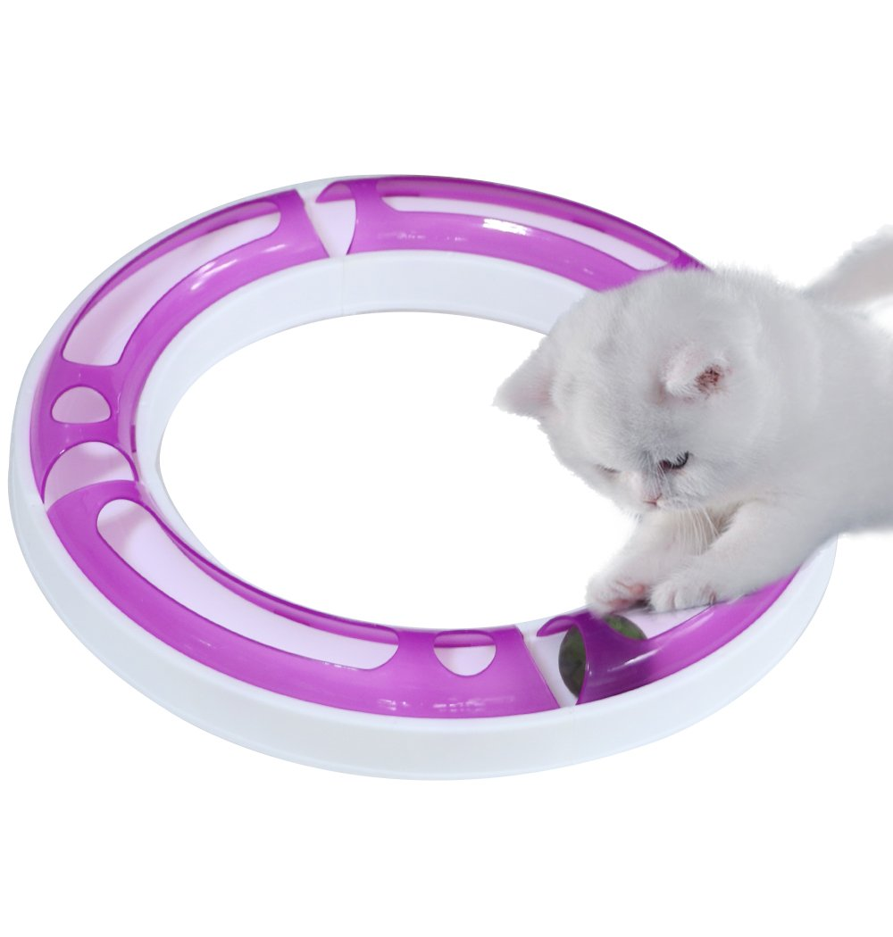 CEESC Cat Track Ball Toy Set, Puzzle Games and Race Track, Funny DIY Assemble for Your Favorite Kittens