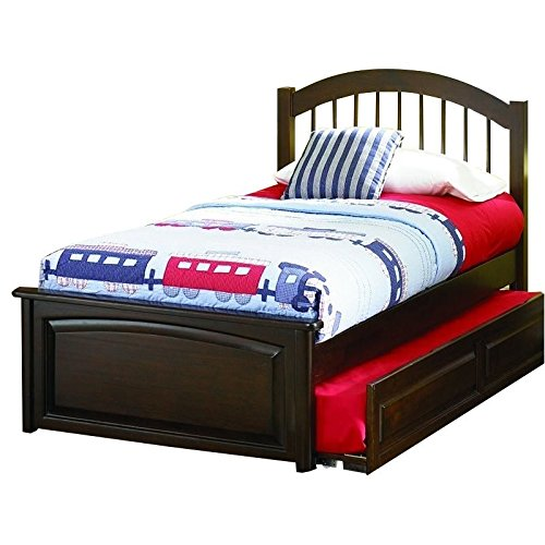 Leo & Lacey Platform Bed with Raised Panel Footboard in Antique Walnut Finish - Twin