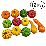 WINOMO 12pcs Assorted Artificial Pumpkins Gourds Table Centerpiece Fall Thanksgiving Display