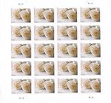 USPS 575900 Series Wedding Roses Commemorative Stamp Scott 4520 Sheet of 20 Forever Stamps