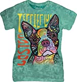 The Mountain Junior's Boston Terrier Graphic T-Shirt, Teal, Medium