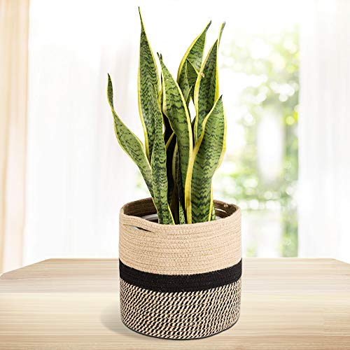 Rope Plant Basket Modern Woven Basket Indoor Planter Up to 10 Inch Pot Woven Storage Organizer with Handles Home Decor, Black and White Stripes 11