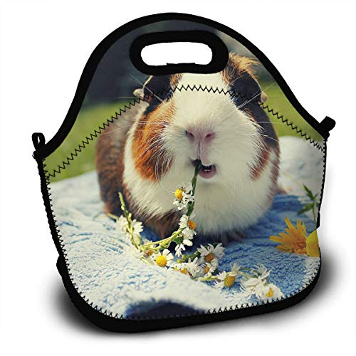 - Diemeouk Lunch Bag for Kids,Tote Box Hamster Insulated and Reusable,Carry Case Handbags