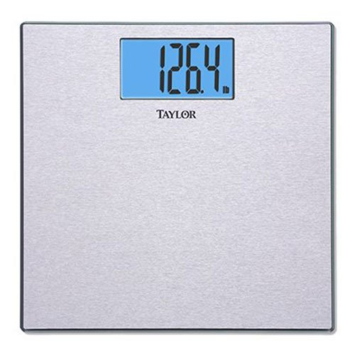 Taylor Precision Products Stainless Steel Electronic Scale by Taylor Precision Products