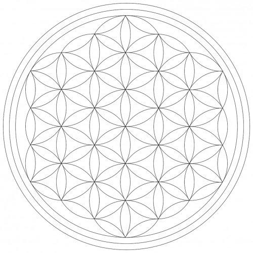 Lebensfreudeladen Mandala Leinwandmalvorlage Blume Des Lebens 25 X