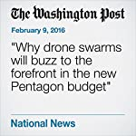 Why Drone Swarms Will Buzz to the Forefront in the New Pentagon Budget | Dan Lamothe