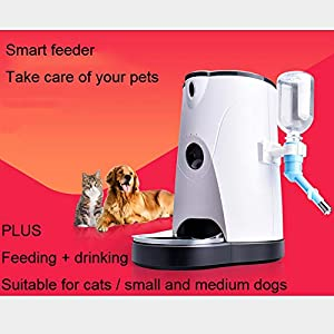 ZISITA-Automatic-Cat-Feeder-with-1280P-HD-WiFi-Camera-Smart-Feed-Auto-Pet-Food-Dispenser-for-Dogs-and-Cats