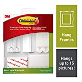 Command 17213-EF Picture Hanging Kit