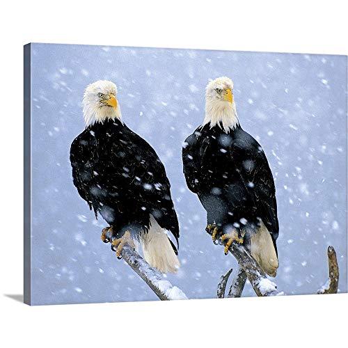 Drifter Canvas - Winter Drifters Canvas Wall Art Print, 40