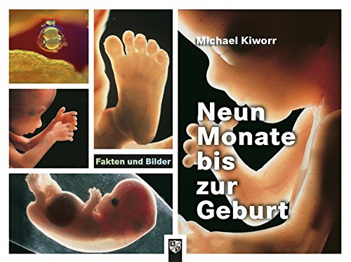 Neun Monate bis zur Geburt: Fakten und Bilder