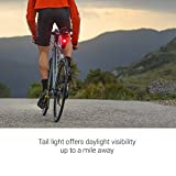 Garmin Varia RTL510, Bike/Cycling Radar Tail Light, Alerts for Rear-Approaching Vehicles
