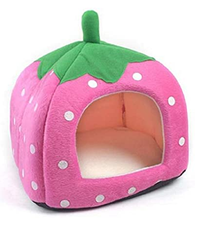 Amazon.com: Cute suave esponja fresa mascota gato perro casa ...