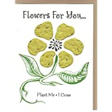 Flowers For You Yellow 3 pack