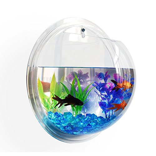 B Lenght & Height 22.5X12cm 8.86\ Fish Tank Aquarium cage Wall Mounted Hanging Home Decoration Pot Plant Bubble Fish Bowl Transparent Acrylic Bowl (B Lenght & Height 22.5X12cm 8.86 x4.72 )