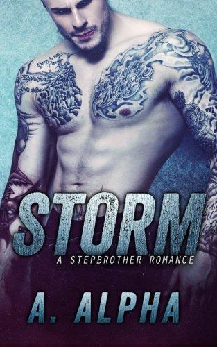 Storm: A Stepbrother Romance ebook