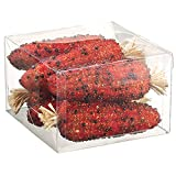 4.5''Hx6''Wx6''L Artificial Boxed Corn On The Cob -Orange (pack of 6)