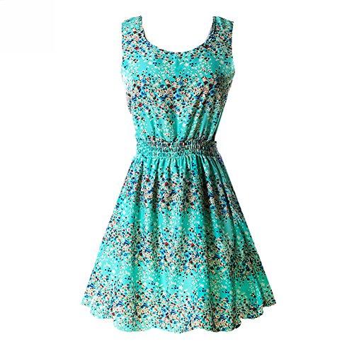 (Daxin Women's Floral Chiffon Sleeveless Sundress Summer Tank Mini Dress Large)