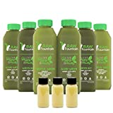 3 Day All Green Juice Cleanse by Raw Fountain - 100% Fresh Natural