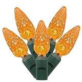 Vickerman 100 Light C6 LED Light Set Orange Lights on Green Wire