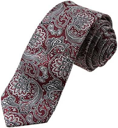 YA-EGQ-B.01 Business Paisley Jacquard Silk Tie World Wide Tie By Y&G