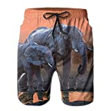 Africa Elephants Sunset Mother and Cub Summer Swimming Trunks Beachwear Shorts