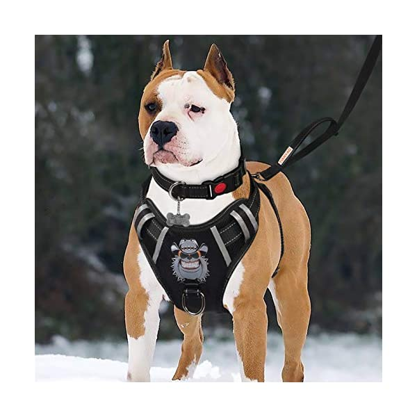 TIANYAO Big Dog Harness No-Pull Dog Vest Set Reflective Adjustable Oxford Material Pet Harness for Large Dogs with Leash and Collar Walking Training and Hiking 1
