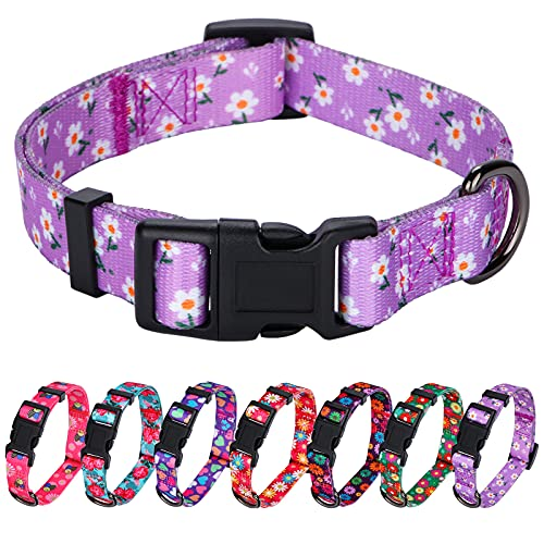Rhea Rose Daisy Girl Dog Collars , Floarl Design for Small Dogs, Purple