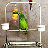 12cm20cm-Stainless-Steel-Skewer-Kabob-Toy-Treat-Food-Bird-Parrot-Small-Animals