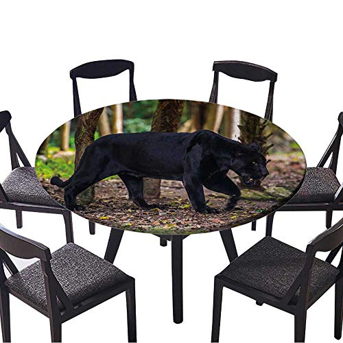 (Easy-Care Cloth Tablecloth Black Panther Walks Through The Jungle for Home, Party, Wedding 59