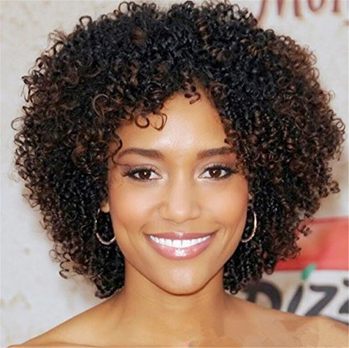 Futuretrend Kinky Curly Afro Wig Cheep Female Wig Brown Kinky Curly Short Wigs for Black Women Heat Resistant African Hair Wigs (Braided Hair Wigs)