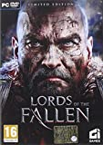 Lords Of The Fallen - Limited Edition (PC DVD)