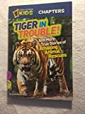 National Geographic Kids Chapters 4-pack Paperbacks: Tiger in Trouble!, Ape Escapes!, Animal Superstars!, Crocodile Encounters
