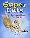 img - for Super Cats: True Stories of Felines that Made History book / textbook / text book