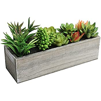 Amazon.com: Artificial Mixed Succulent Plants in Rectangular Brown ...