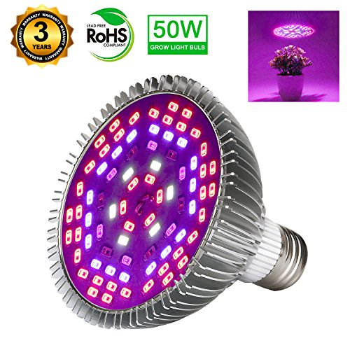 Will Led Light Grow Plants