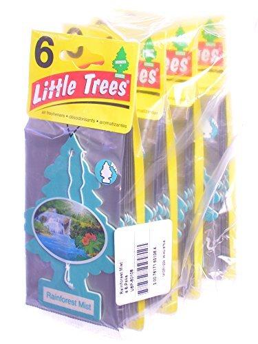 Freshener Air Rainforest (Little Trees Cardboard Hanging Car, Home & Office Air Freshener, Rainforest Mist (Pack of 24))