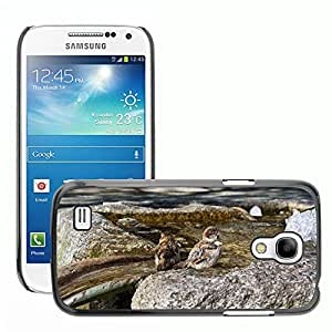 Super Stellar Slim PC Hard Case Cover Skin Armor Shell Protection // M00126490 Sparrows Sparrow Bird Swim Water // Samsung Galaxy S4 Mini i9190
