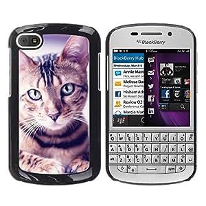 TopCaseStore / la caja del caucho duro de la cubierta de protección de la piel - Egyptian Mau Manx Ocicat Portrait Cat - BlackBerry Q10