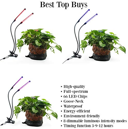 7 Color Led Grow Light in US - 4