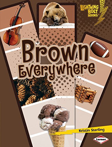 Brown Everywhere (Lightning Bolt Books) (Lightning Bolt Books: Colors Everywhere (Library))
