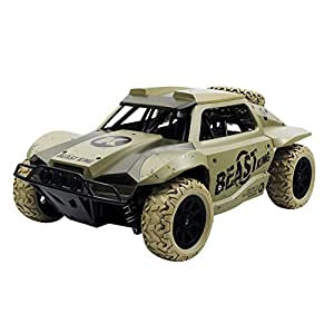 RC Toy,HB-TOYS-DK1801 1/18 Wireless RC Cars Truck- Electric Remote Control Racing Car [ RC High Speed Racing Car Vehicle ]-Battle Bumper Toys For Kids Adults (C)