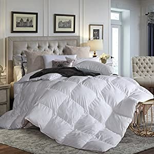L LOVSOUL Down Comforter King All Season Duvet Insert,Goose Down Comforter with Down Proof Fabric,700 Fill Power,Grey Comforter(106x90inches)