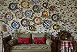 Decors Barbares: The Enchanting Interiors of
