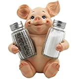 Country Kitchen Table Decorative Pig Glass Salt and Pepper Shaker Set with Holder Stand in Farm Animal Figurines, Sculptures & Statues or Rustic Country Kitchen Decor and Restaurant Table Spice Rack Decorations As Gifts for Farmers