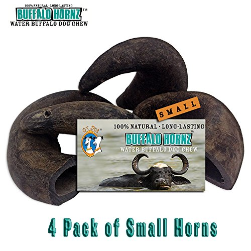 - 4 Pack of Buffalo Hornz Small Long Lasting 100% Natural Water Buffalo Horn Dog Chews