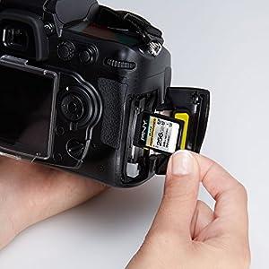 PNY 256GB Elite Performance Class 10 U3 SDXC Flash Memory Card - 95MB/s read, Class 10, U3, 4K UHD, Full HD, UHS-I, Full…