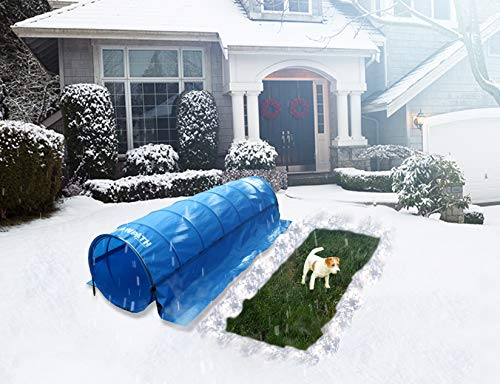 (Snow Path For Your Dog To Go Outside When it Snows)